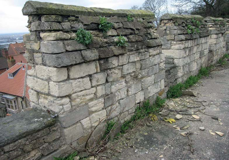 882-01 Lincoln Castle Walls10